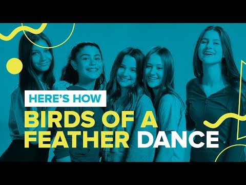 BIRDS OF A FEATHER | Official Dance Video | Chicken Girls Cast