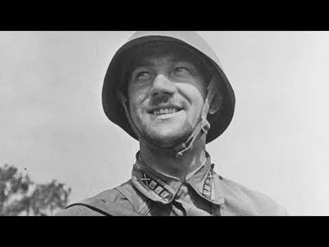 Почему солдаты РККА носили знаки различия на воротнике?