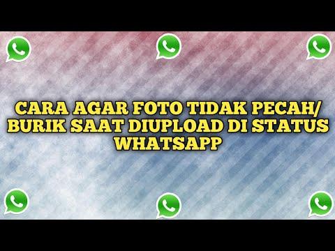 cara-agar-foto-tidak-pecah/burik-saat-diupload-di-status-whatsapp