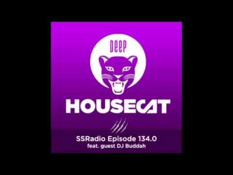 DEEP HOUSECAT SHOW Episode 134.0