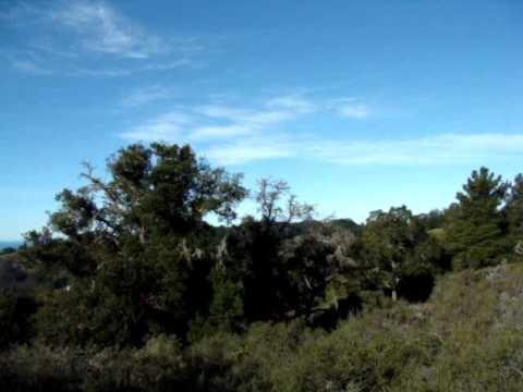 land on  pfeiffer ridge 042.MPG