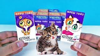КОТЯТА 5 серия ДАВАЙ ИГРАТЬ Сюрпризы от Фреш Тойз! Бархатные игрушки для детей Surprise unboxing