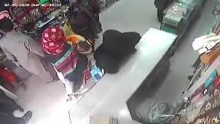 Thief Caught in Camera. Hidden Camera
