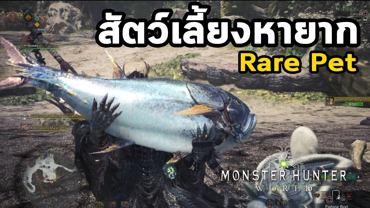 Monster Hunter World - มอนฮันท์ Tips#017 : Rare Pets (สัตว์เลี้ยงหายาก)