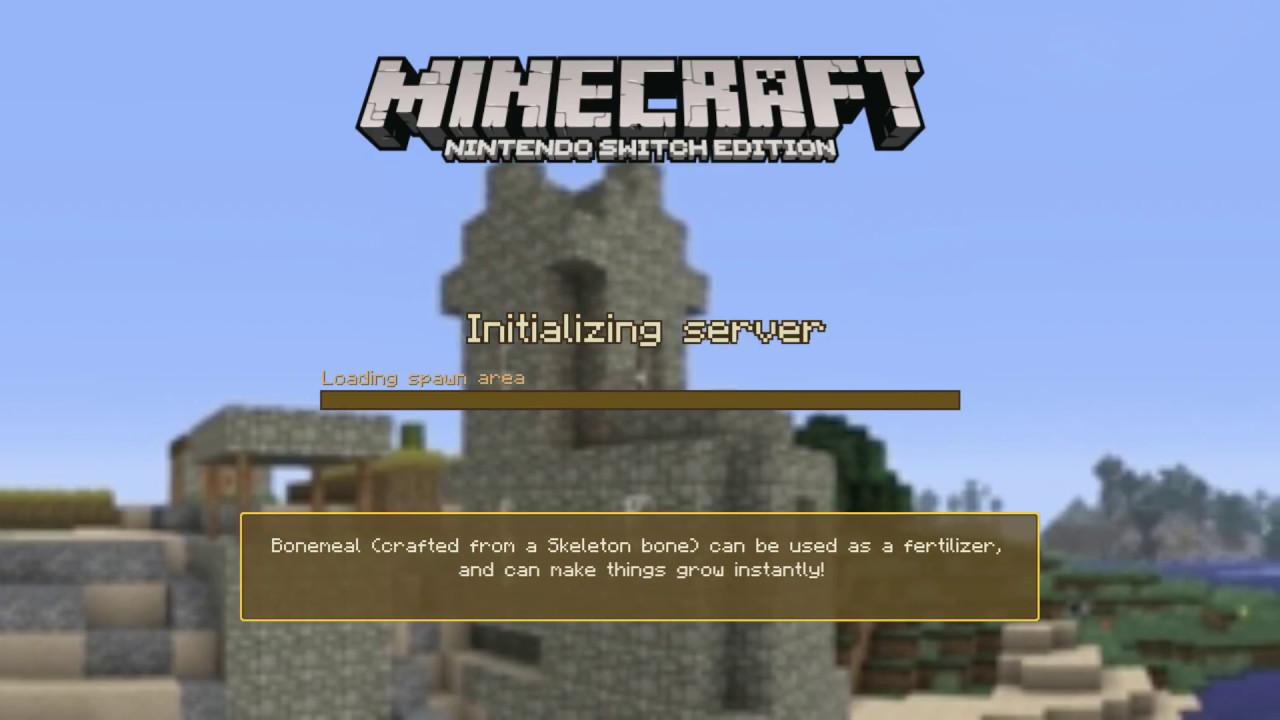 Minecraft (Nintendo Switch) Texture Packs And Stuff