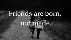 Schöne Freundschaftssprüche  ♥