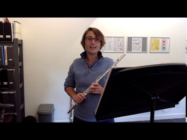 Example Flute Video Lesson