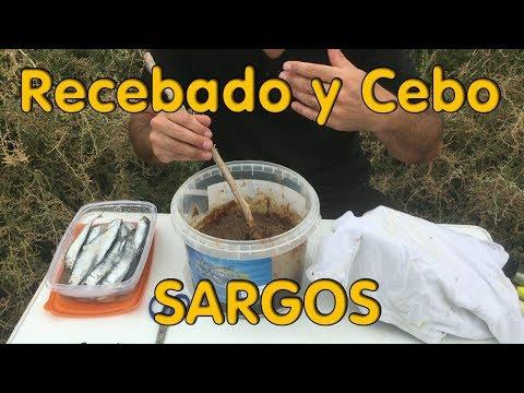 Recebado y cebo para el Sargo. Efectivo from YouTube · Duration:  7 minutes 31 seconds