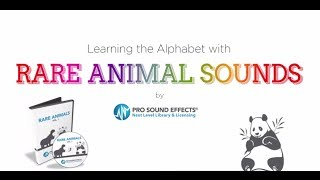 The Rare Animal Sound Effects Alphabet (read by Krump the Clown!)