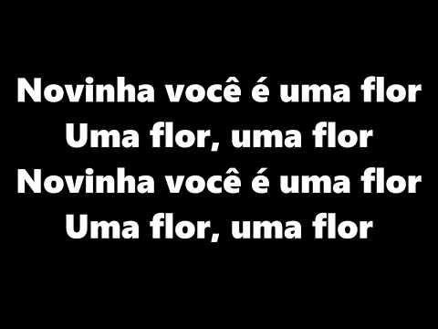Novinha Você é Uma Flor LETRA MC Thin e MC Alexandre feat MC Viana