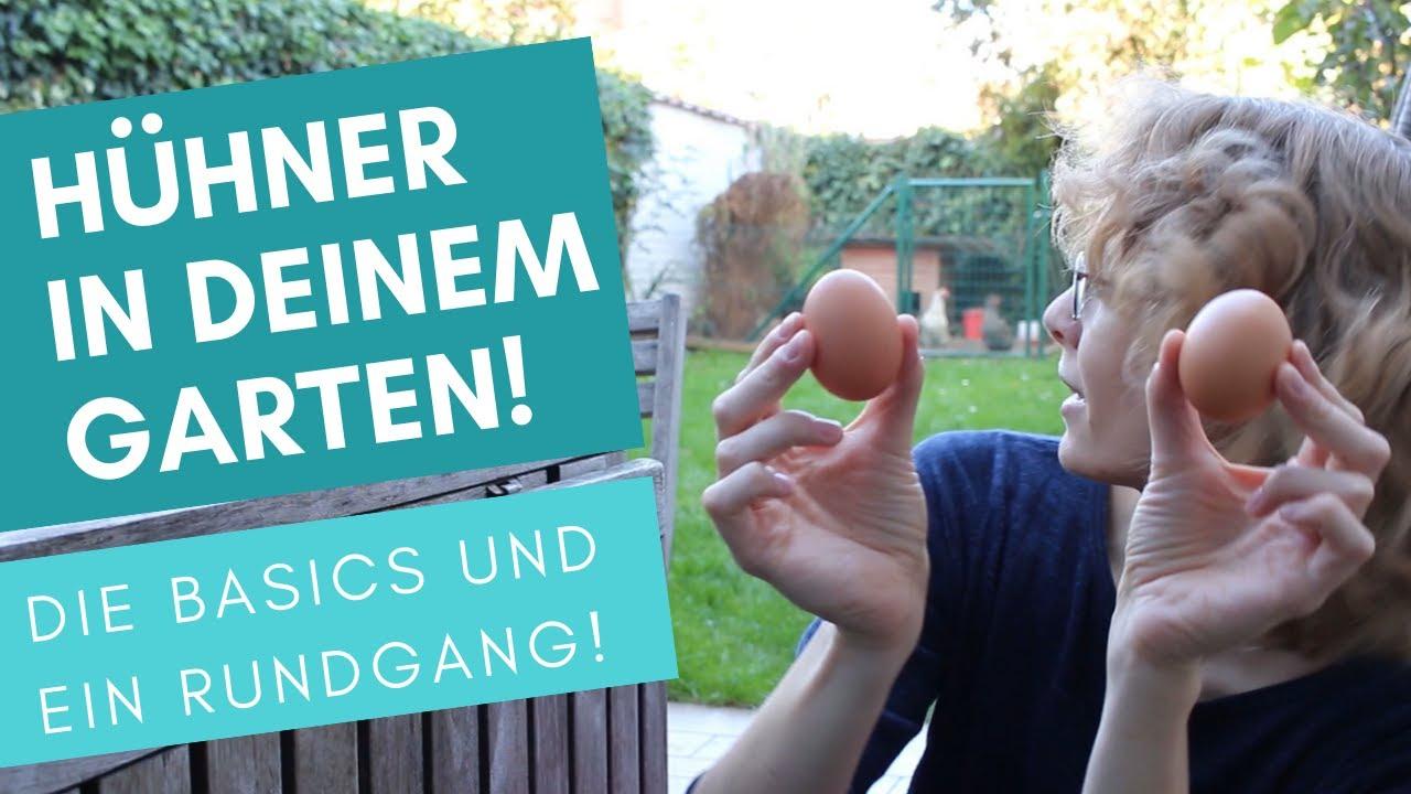 Hühner im Garten halten: Rundgang für Anfänger! - YouTube