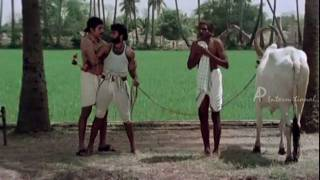 Sakalakala Vallavan   Tamil Movie   Scenes   Clips   Comedy   Kamala Hassan Fight Scene