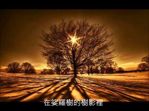 《伽南香娑羅樹》  fragrant nirvana tree - 朱哲琴 (Dadawa)