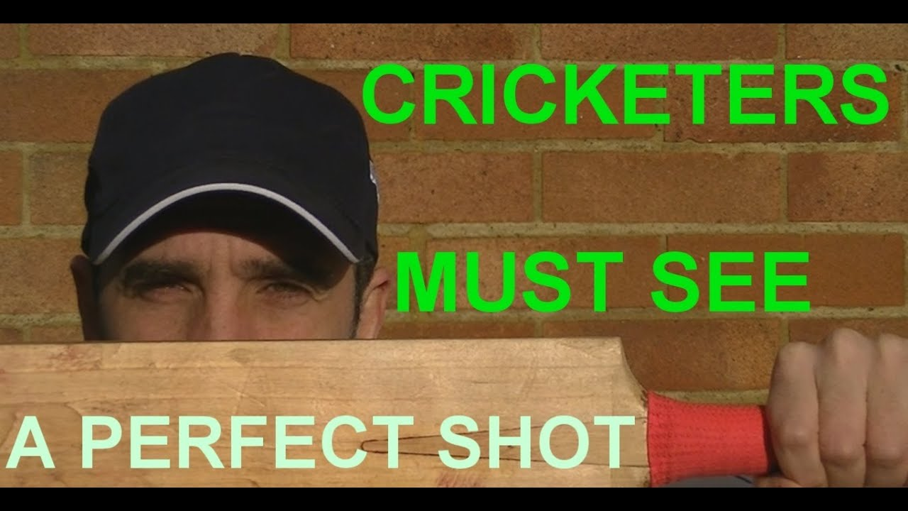 how to play cricket shots