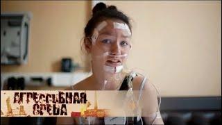 Биоритмы | Агрессивная среда с Александрой Говорченко