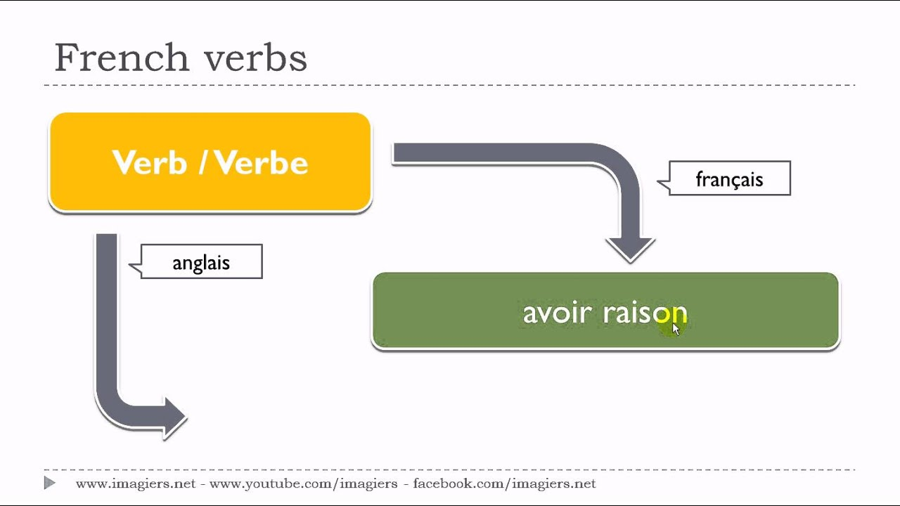 Learn 1 French Verb Avoir Raison French4you Net