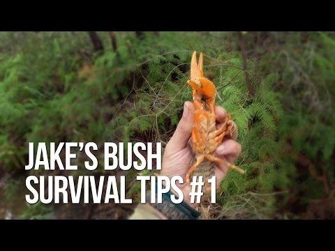 Jake's Bush Survival Tips #1