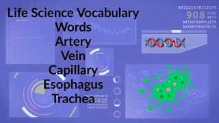 Life Science Vocabulary week 8