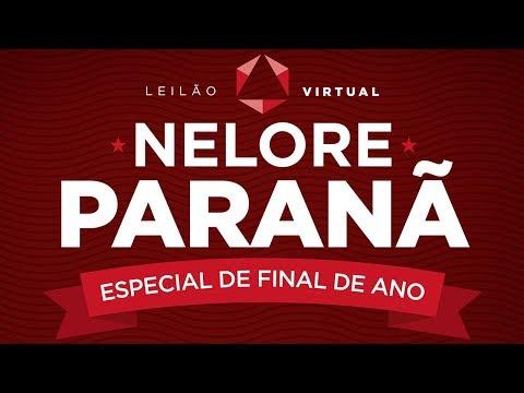 Lote 55 (Heton do Paranã - PAR 9598)