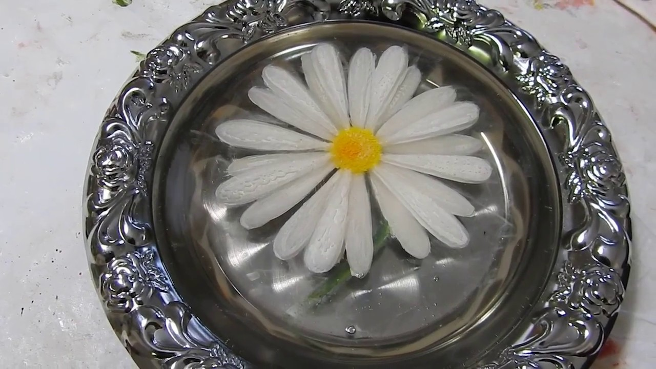 Daisy Flower 3d Resin Paint Youtube