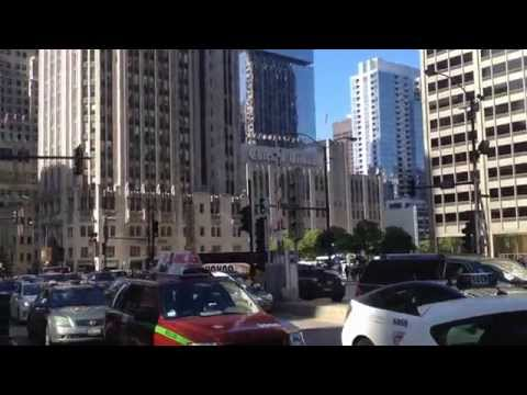 The Chicago Tribune Tower Building (Downtown Chicago, Illinois)