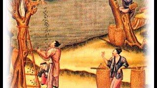 Китай в средние века. История 6 класс.