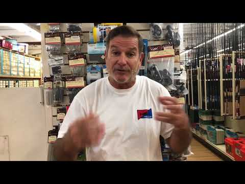 Sarasota Fishing Report/ BIG Tripletail