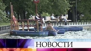 Приближение осени почувствуют на этой неделе жители Центральных регионов России.