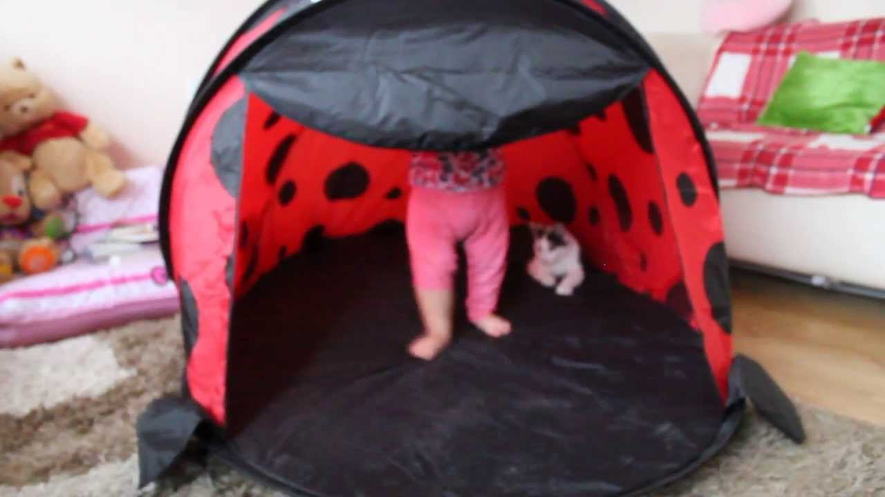 Blue toy play pop up tent, 2 sleeping bags, ladybug & flower print.