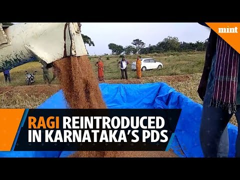 Ragi reintroduced in Karnataka\'s PDS