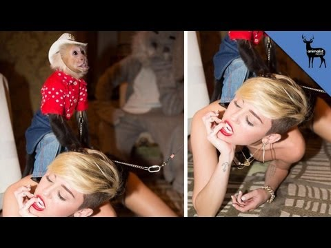 You'll Never Guess Who Was Twerking With Miley Cyrus