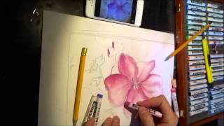 Уроки рисования Рисунок пастелью Чайковская Ксения