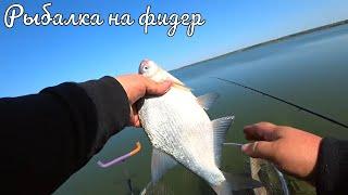 Як ловити на фідер в Харківській області
