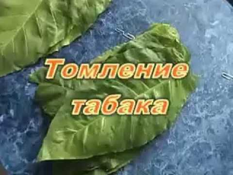 Download Томление табака