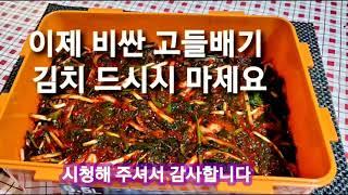 [ 고유 의 맛 고추잎 김치 ]  고들빼기 김치가 울고…
