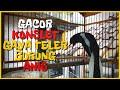Kacer Gacor Konslet Roll Tembak Isian Mewah Sampai Meniru Teler Gaya Burung Anis Batu  Mp3 - Mp4 Download
