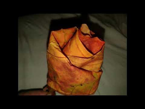 Проект осенний букет из кленовых листьев своими руками