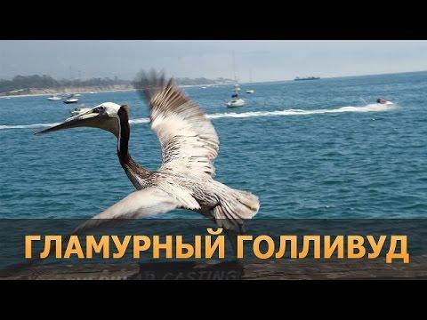 Экскурсия в чернобыль видео ::