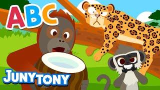 Alphabet Animals 2   Animal Songs for Kids   Alphabet & Phonics Songs   Preschool Songs   JunyTony