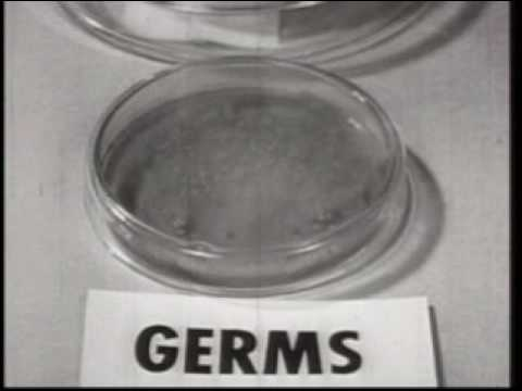 Biological Weapons 1952