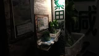 昔ながらの野菜を無農薬で育てています 阪急六甲の鍼灸院前で直売してい...
