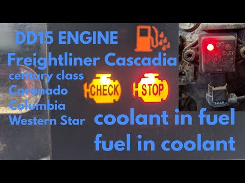 Freightliner Cascadia DD13 DD15 Engine Coolant In Fuel - Fuel In Coolant OM 471 OM 472