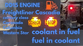 Reading fault codes from a Cascadia Dash - YouTube