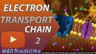 Electron Transport Chain Etc Part 2