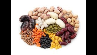 Processing of Common Food Ingredients