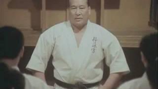 Kyokushin karate kata  Gekisai Dai 撃砕大