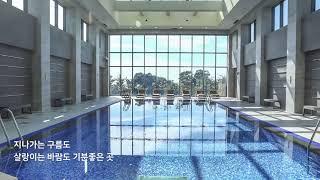 온천&수영장 홍…