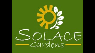 Summer at Solace Gardens