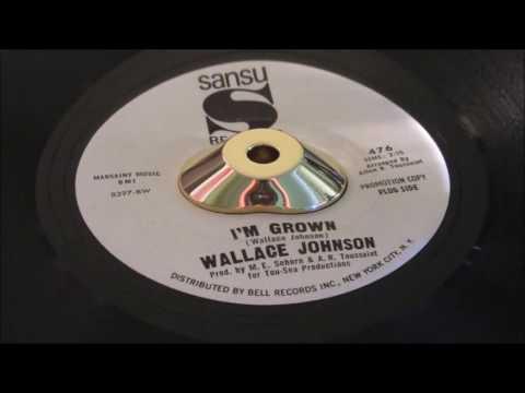 Wallace Johnson - I'm Grown - Sansu: 476 DJ