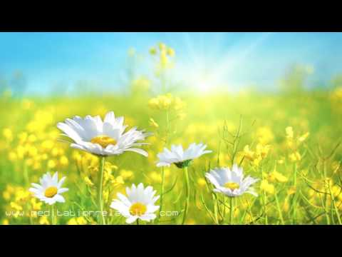 Awakening of the Soul: 8 HOUR Energy Yoga Music with Sounds of Nature Tracks